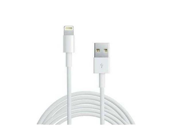 Apple Lightning Şarj ve Senkronizasyon Kablosu 1m