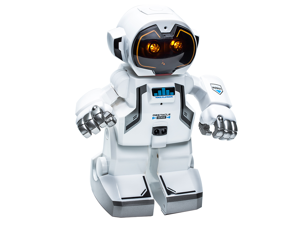 Silverlit Echo-Bot Robot