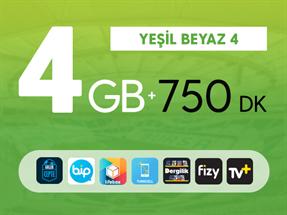 Yeşil Beyaz 4GB