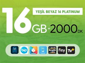 Yeşil Beyaz 16GB Platinum