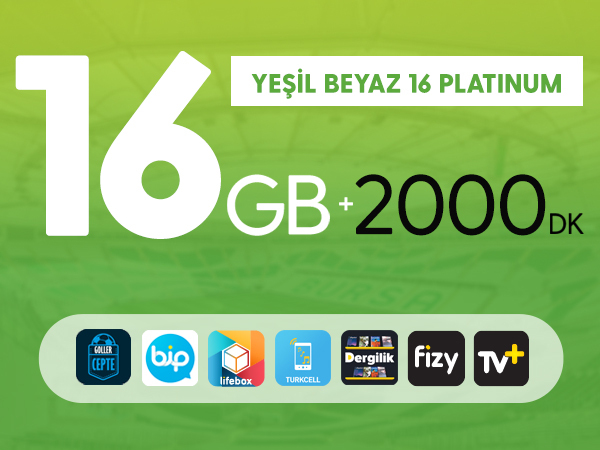Yeşil Beyaz 16 GB Platinum