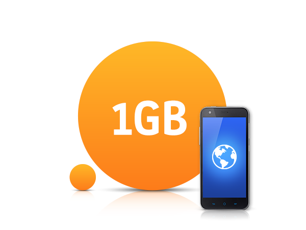 1 GB İnternet Paketi