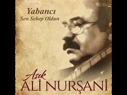 Aşık Ali Nurşani Yabancı Sen Sebep Oldun Plak