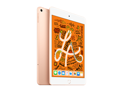 iPad Mini Wi-Fi + Cellular 64 GB 2019